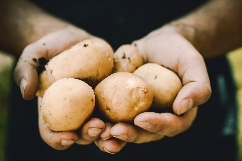 ziemniaki, opakowania, targi